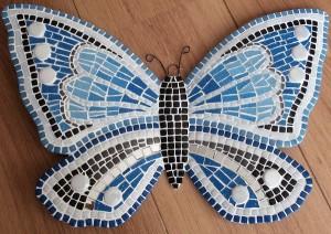 vlinderblauwoog1