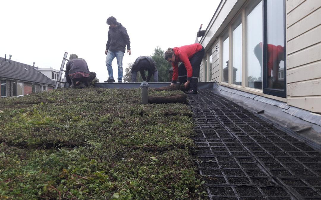Succesvolle groene daken excursie op De Worp