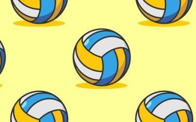 Volleyballers gezocht!