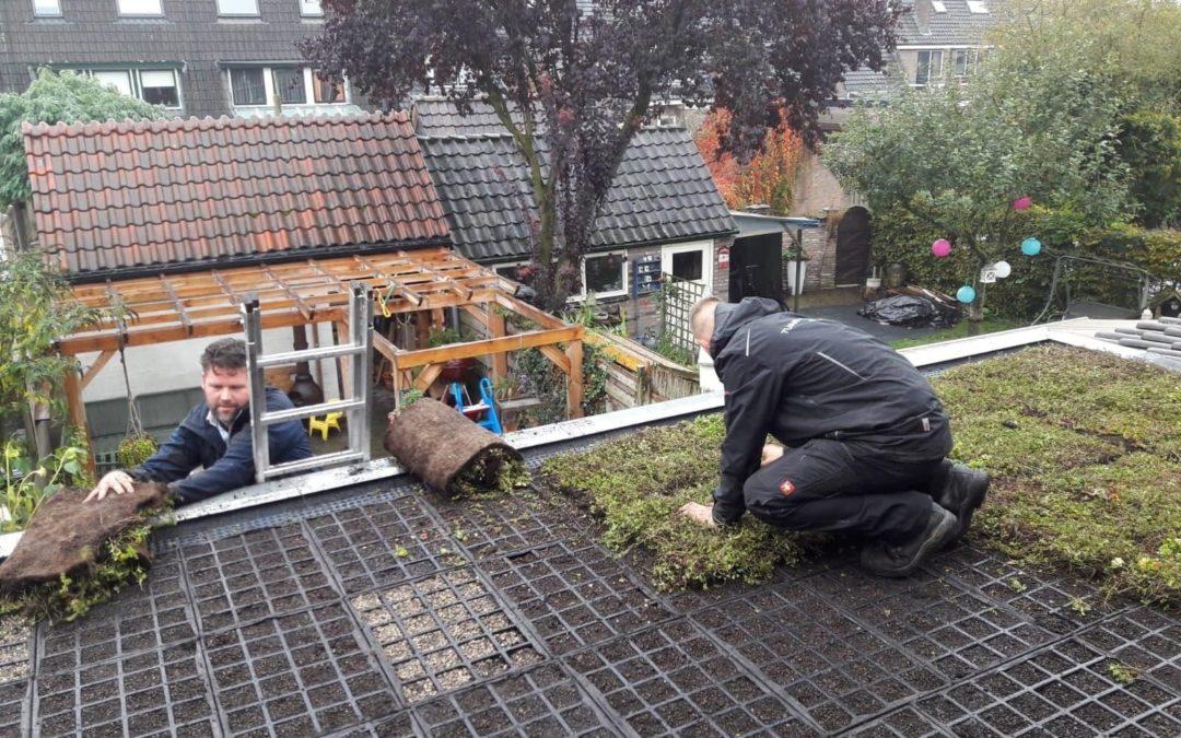 Derde ronde groene daken